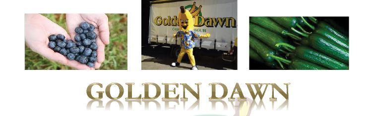 Golden dawn banner
